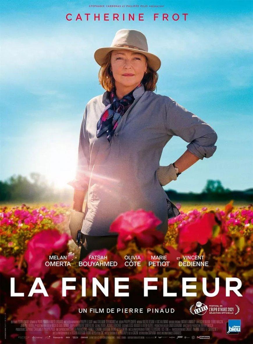Cinema REX - La fine fleur - Ribeauvillé