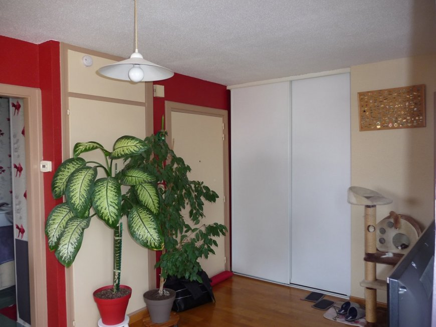 APPARTEMENT 2 PIECES A LINGOLSHEIM - SOUS COMPROMIS DE VENTE
